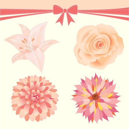 lover: Lover invitation card.Isolated of flower.