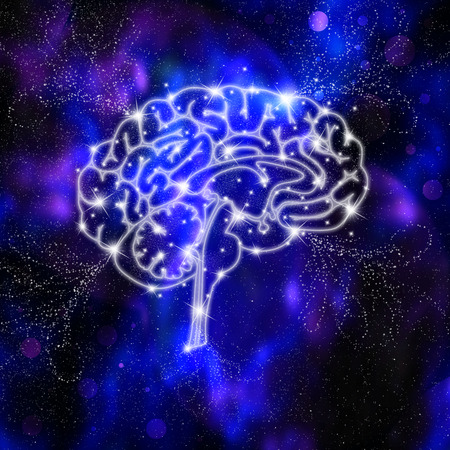 cellule nervose: Cervello