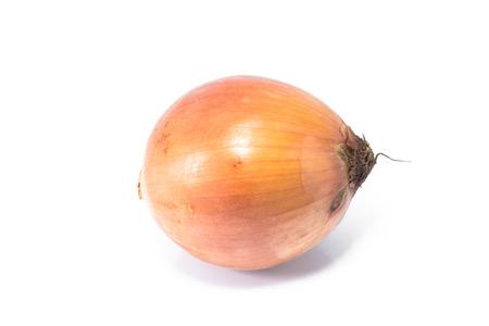 onion isolated: Cebolla aisladas  Foto de archivo
