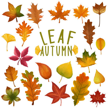 Set of watercolor painted Leaf, Autumn leaves clipart. Hand drawn isolated on white background. Иллюстрация