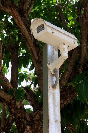big brother spy: Security camera