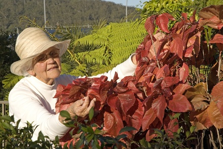 Senior lady tends to her garden