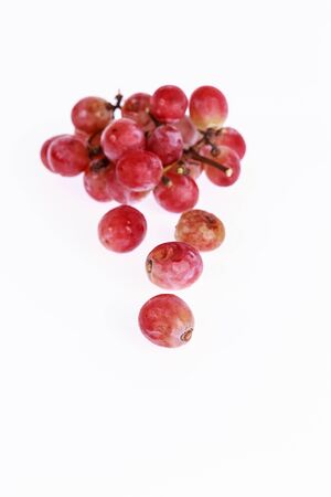 thorough: rotten grapes from a vineyard-toxix but not thorough care benefit consumers in the long shoot on a white background Stock Photo