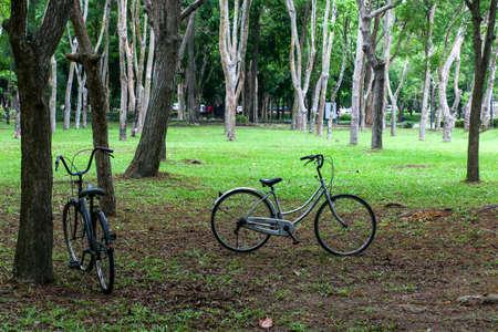parking facilities: Bicycle parking facilities The Park