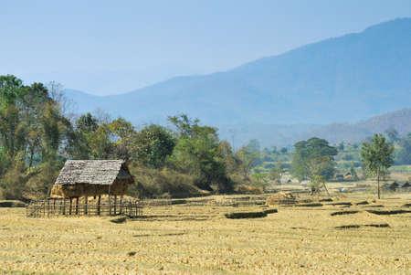Thai countryside home