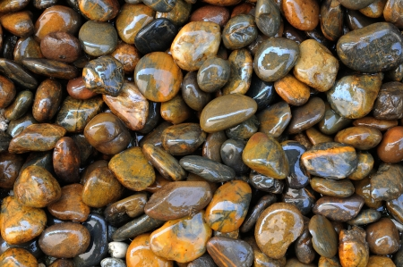 wet stone texture  photo