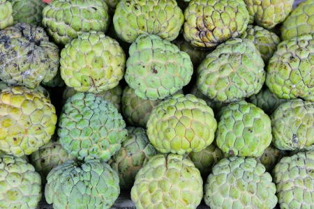 custard apple fruit: Custard apple, Asia fruit