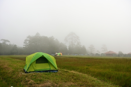 tent in the mist at camping site, Phu-Kradueng National Park, Thailand  photo