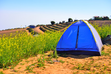 Camping Tent on hill Stock Photo