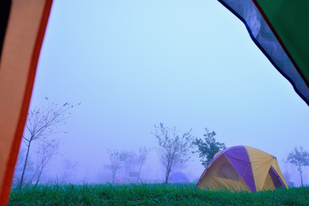tranquilly: Camping Tent on hill under raining and mist