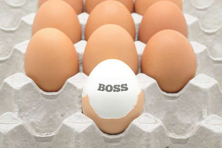 teamwork cartoon: eggs with a boss text Stock Photo