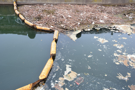dirty: Dirty canal