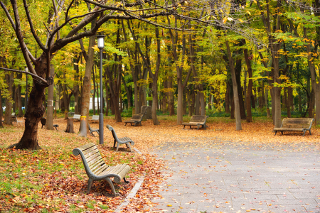 Osaka public park in autumn is around Osaka castle, Japan Stock Photo