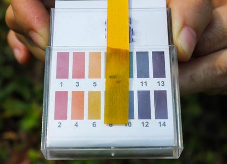 Litmus ph test paperisolated photo
