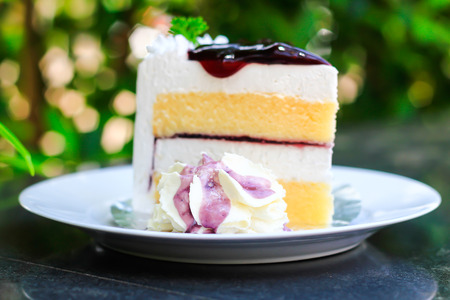 上のブルーベリー チーズ ケーキ