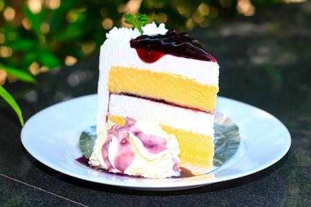 上にブルーベリーとチーズケーキ 写真素材