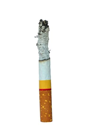 One Cigarette isolated on the white background photo