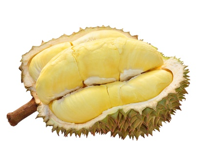 Durian isolated on white background Banque d'images