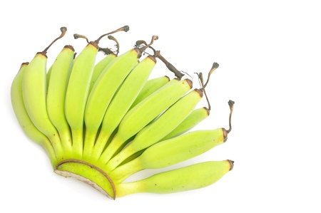 Young green banana against white background Stock Photo - 14544543