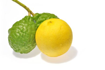 Lemon and Kaffir Lime fruits isolated on white  photo