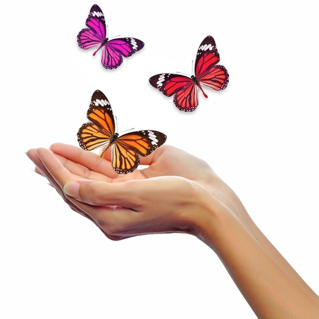Hands releasing butterflies photo