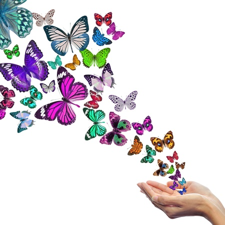Hands releasing butterflies Stock Photo - 15994794