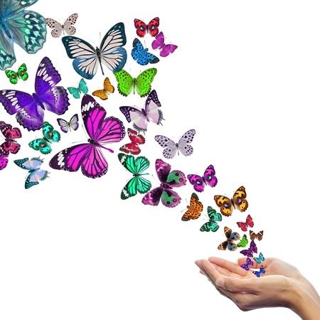 Hands releasing butterflies Stock Photo - 15994794