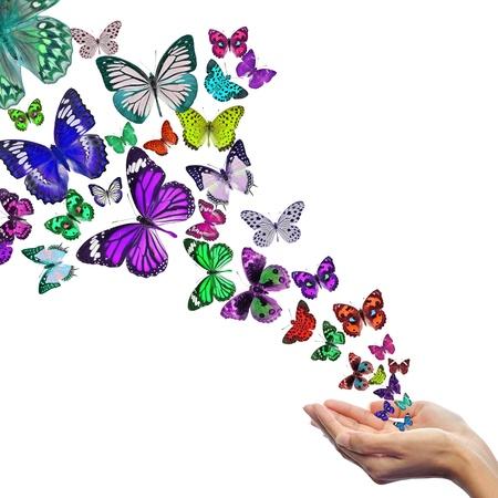 hands free: Manos liberar mariposas Foto de archivo