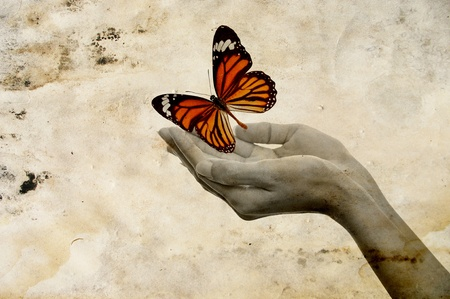 Hands releasing a Monarch butterfly
