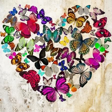 liefde: Hart van de vlinders