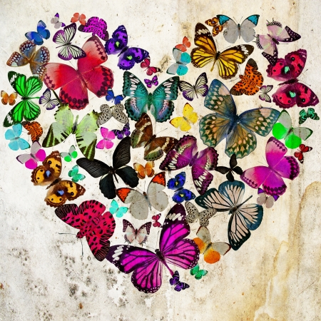love you: Heart of the butterflies