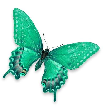 mariposas volando: Mariposa verde aislado sobre fondo blanco