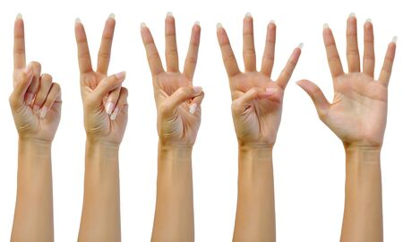 Counting woman hands (1 to 5) isolated on white background Stock Photo - 16251725