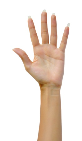 Woman hand (palm) isolated on white background Banque d'images