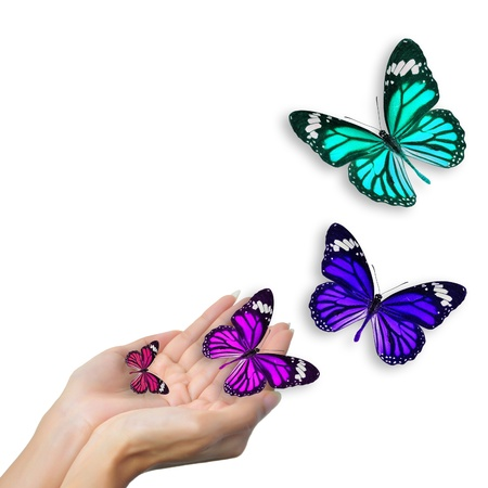 hand colored: hands with butterflies  Stock Photo
