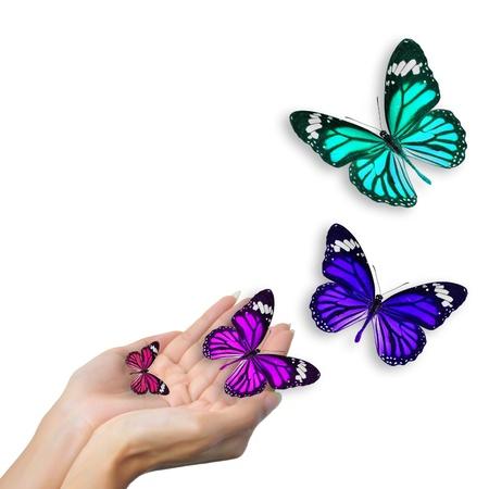 amistad: manos con mariposas