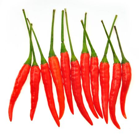 red chili peppers isolated on a white background Stock Photo - 16802689