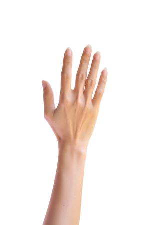 symbol hand: Frau Hand aufgerichtet. Isoliert auf wei?em Hintergrund. Lizenzfreie Bilder