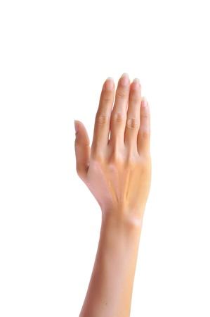 女性の手が 。白い背景上に分離。