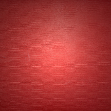 red leather texture Stock Photo - 20749593