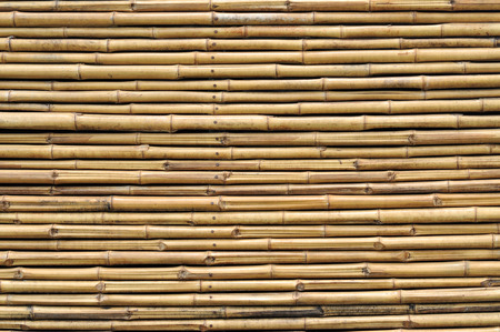 chinese bamboo: bamboo fence background texture