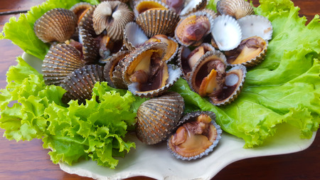 cockles: Fresh and delicious cockles for seafood background