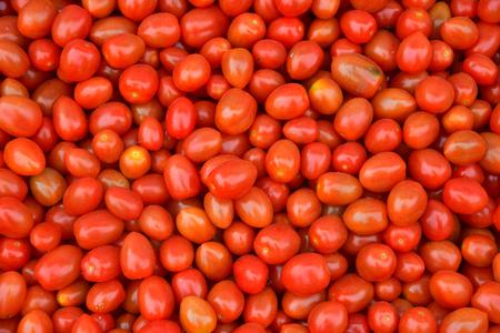 Group of fresh tomatoes for background Zdjęcie Seryjne