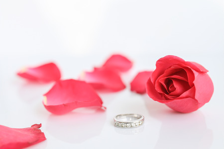Red rose with ring on white background (valentine concept) photo