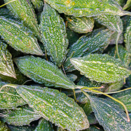 malaysian food: Green bitter melon at market, traditional malaysian food Stock Photo
