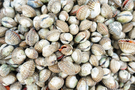 beachcombing: fresh cockles for sale at a market
