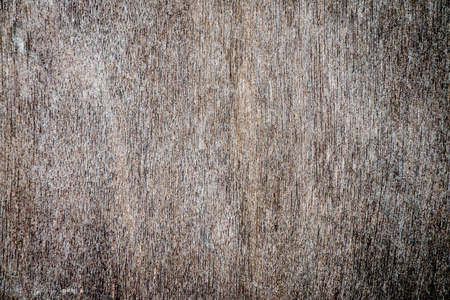 space wood: Grunge wood background with space for text or image
