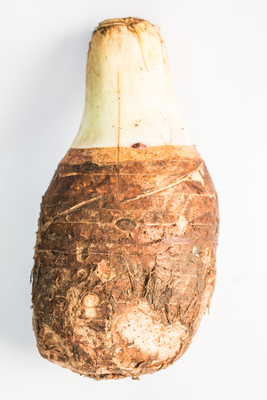 esculenta: Colocasia esculenta taro root isolated on white background Stock Photo