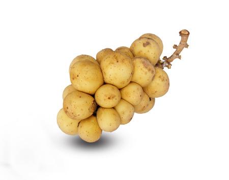 thailand fruit: Lansium demesticum isolated on white background, Thailand fruit.