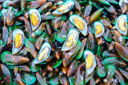 mollusca: Fresh mussels at the market in Thaillnd